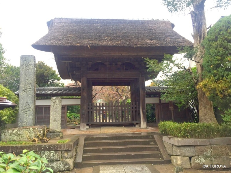 ☂ 雨の鎌倉散策 ☂  極楽寺へ_a0092659_22574090.jpg