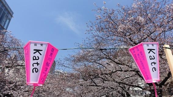 今日の目黒川(4/4水)_f0230689_11565528.jpg