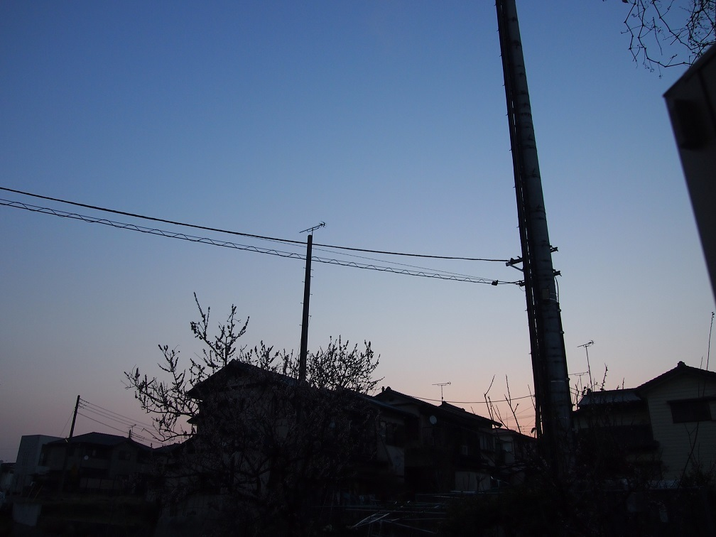 a0300098_18104571.jpg