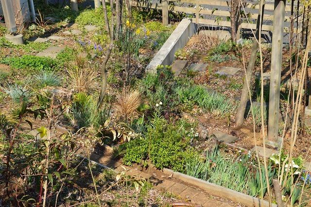 清明…4月4・6日の庭。_c0124100_21465104.jpg