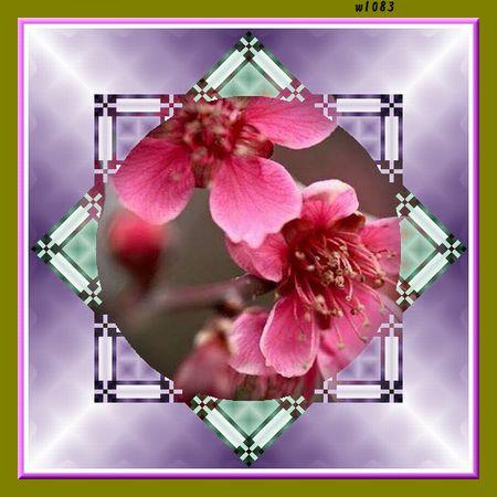 f0132006_111971.jpg