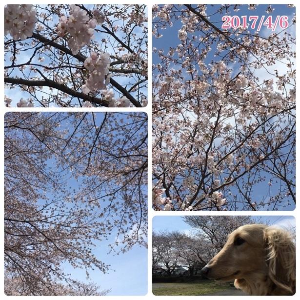 f0162908_20095036.jpg