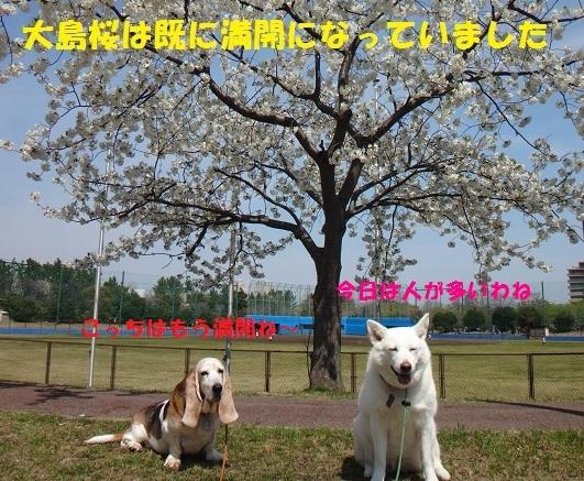 f0121712_15083144.jpg
