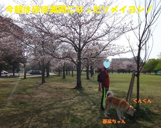 f0121712_15141860.jpg
