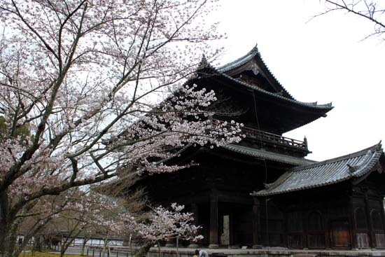 南禅寺 桜スタート_e0048413_20104177.jpg