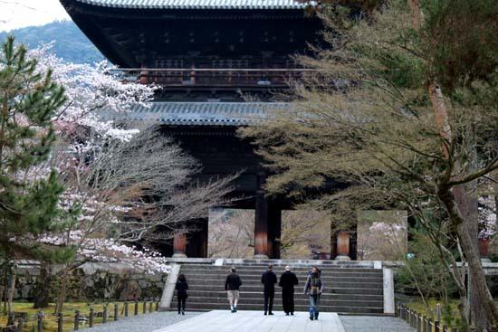 南禅寺 桜スタート_e0048413_20105573.jpg