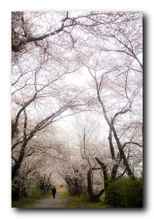 f0222919_20110721.jpg