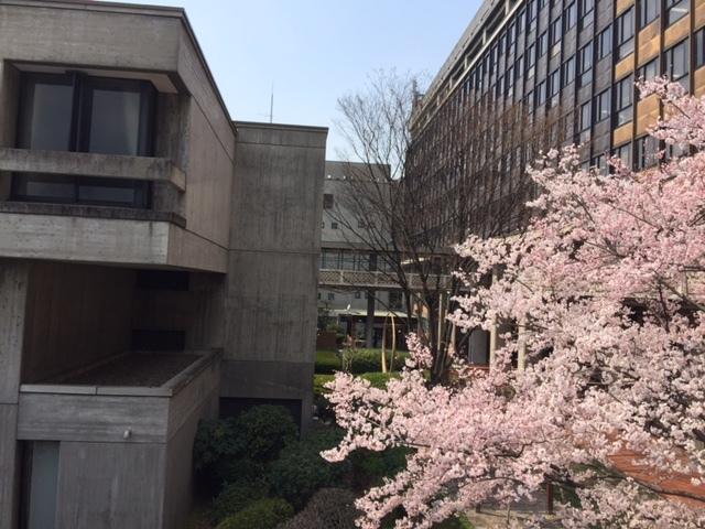 今春の県立高校入試で気に掛かること。_c0326333_08332342.jpg