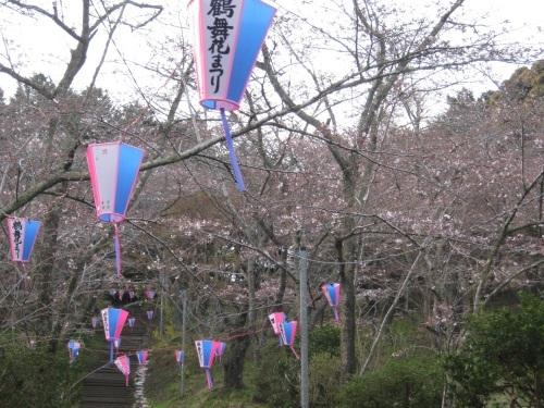 4/6 鶴舞公園の開花状況_c0363752_11422582.jpg