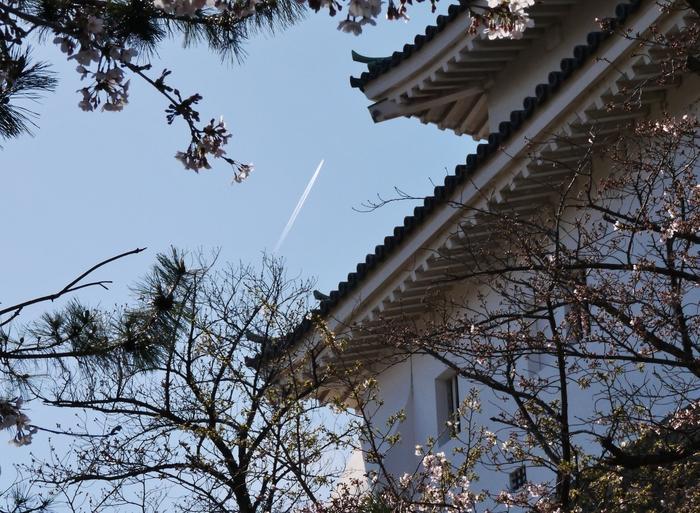 天守閣と飛行機雲_b0093754_14524915.jpg