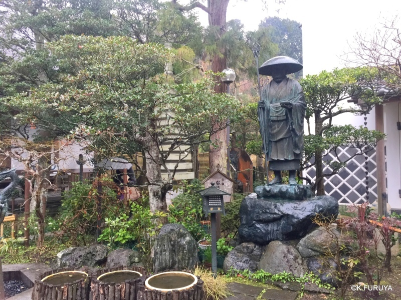 ☂ 雨の鎌倉散策 ☂  成就院と御霊神社_a0092659_19122238.jpg