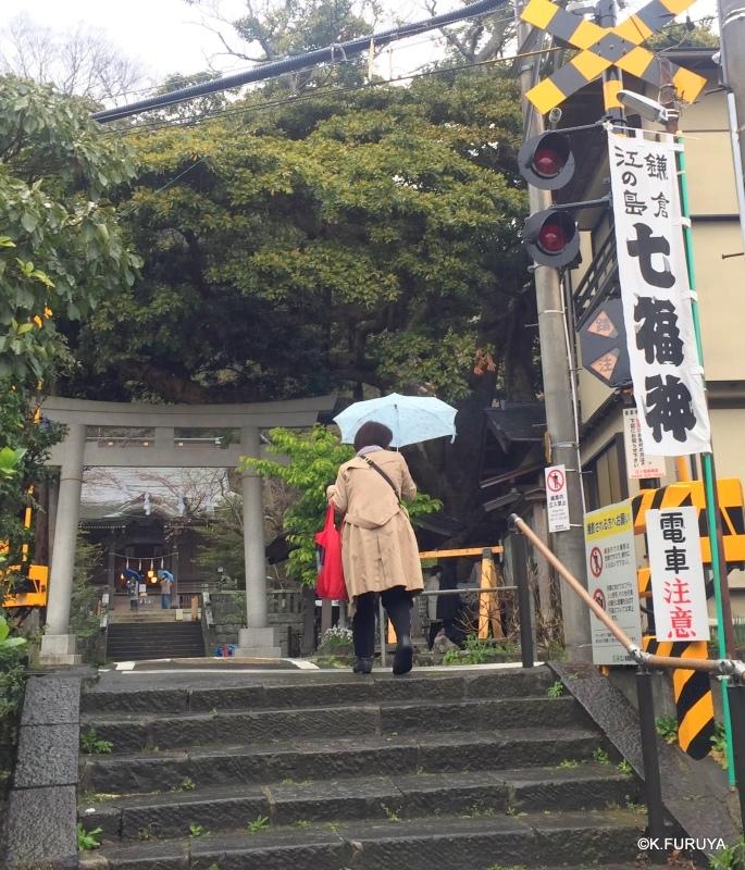 ☂ 雨の鎌倉散策 ☂  成就院と御霊神社_a0092659_19255721.jpg