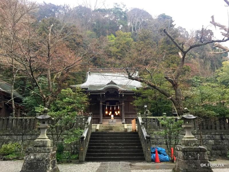 ☂ 雨の鎌倉散策 ☂  成就院と御霊神社_a0092659_19263332.jpg