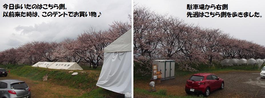f0101679_20273679.jpg