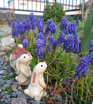 春や春!_f0129726_22255887.jpg