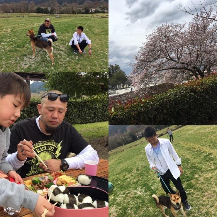 奈良刺青 奈良和彫り_a0164633_20355841.jpg