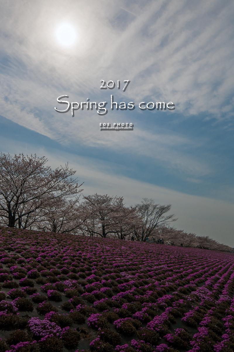 2017 春_e0151188_21114575.jpg
