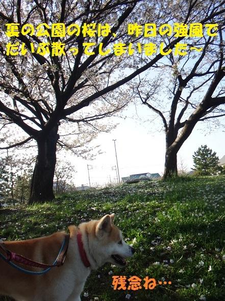 f0121712_15010579.jpg