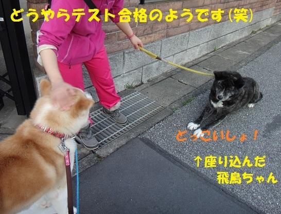 f0121712_15014108.jpg