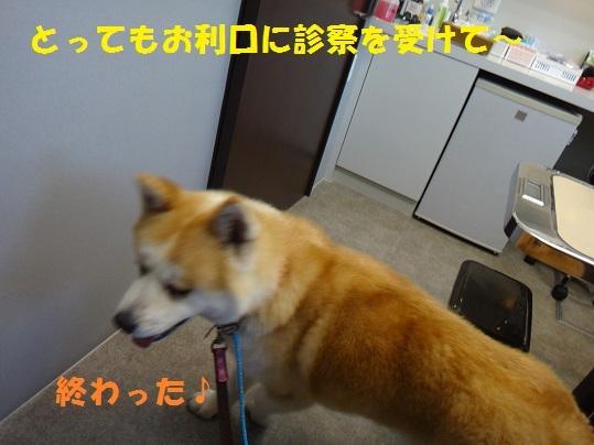 f0121712_15020492.jpg