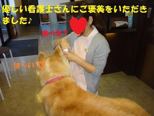 f0121712_15021132.jpg