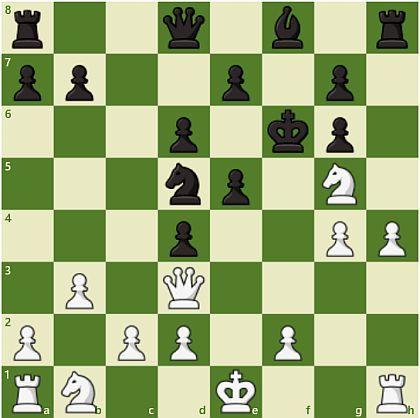 将棋 vs チェス_d0168150_13005529.jpg