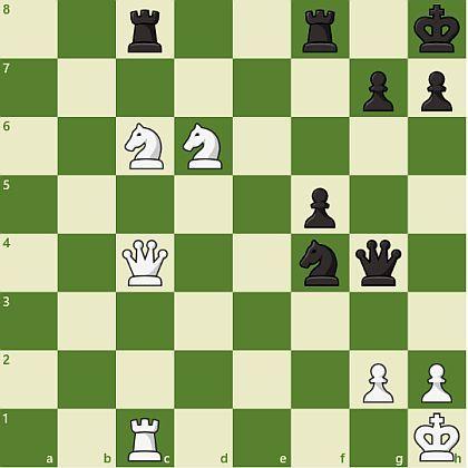 将棋 vs チェス_d0168150_13010032.jpg