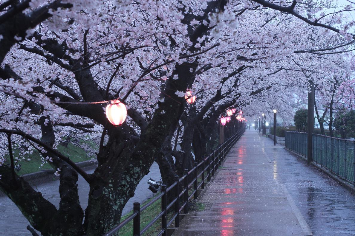 東京教室のお稽古_b0299052_19460361.jpg
