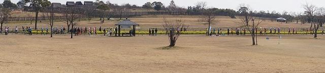 桜はまだ咲いていないけど 桜マラソン_a0201257_14431159.jpg
