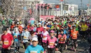 桜はまだ咲いていないけど 桜マラソン_a0201257_15072969.jpg