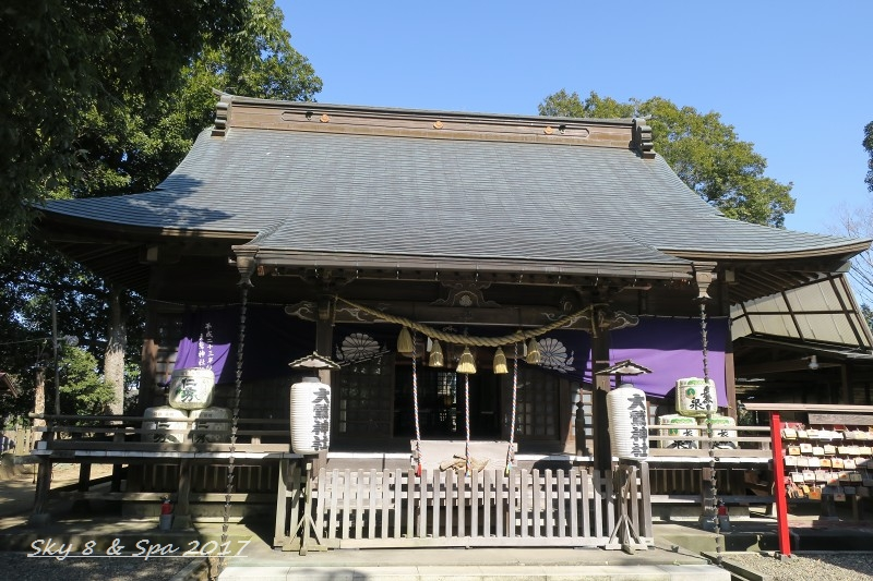 ◆ 千葉県印旛郡 「大鷲神社」へ (2017年2月)_d0316868_10583443.jpg