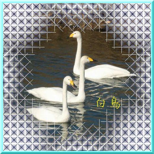 d0355984_14562973.jpg