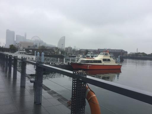 珍しく雨☂️_b0210699_21274578.jpg