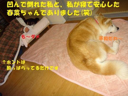 f0121712_15564206.jpg