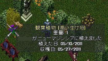 c0325013_07180605.jpg