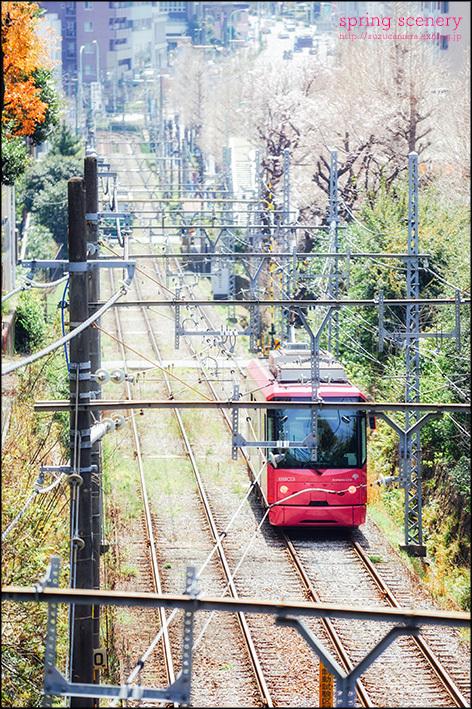 春色電車_f0100215_23025360.jpg