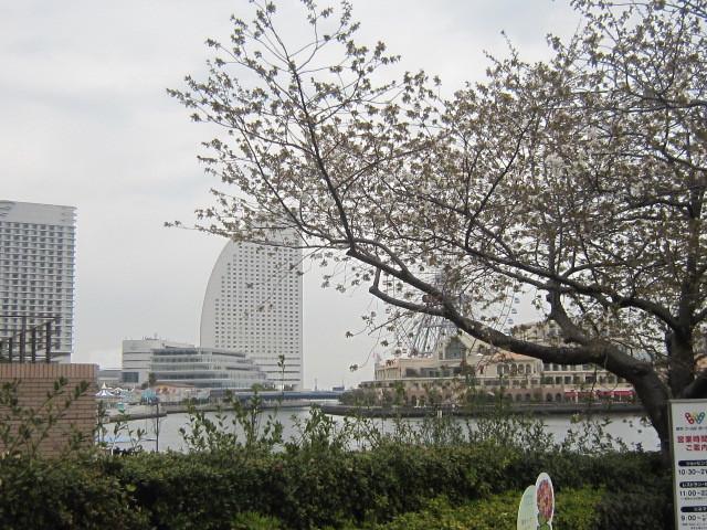 ♪春と共に★レオンジャックⅡ(千秋楽)_d0162225_21421924.jpg