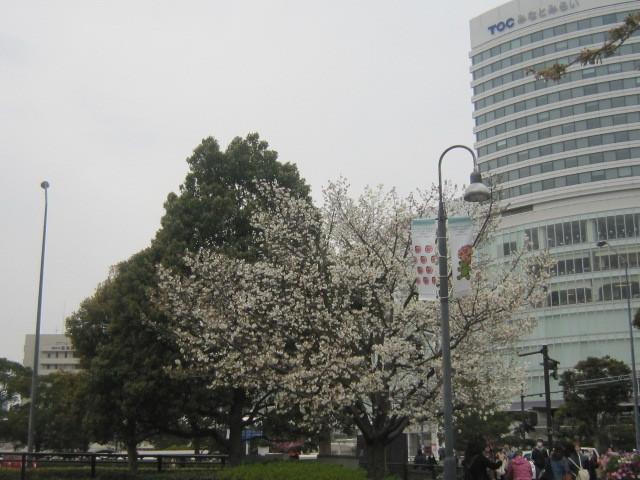 ♪春と共に★レオンジャックⅡ(千秋楽)_d0162225_21430196.jpg