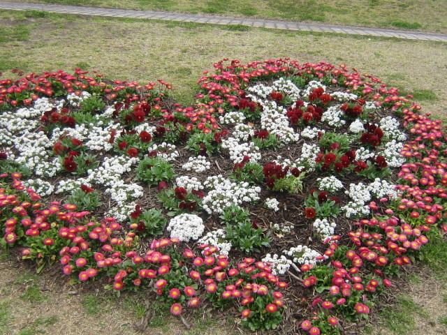 ♪春と共に★レオンジャックⅡ(千秋楽)_d0162225_21440963.jpg