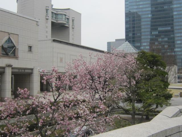 ♪春と共に★レオンジャックⅡ(千秋楽)_d0162225_21453651.jpg