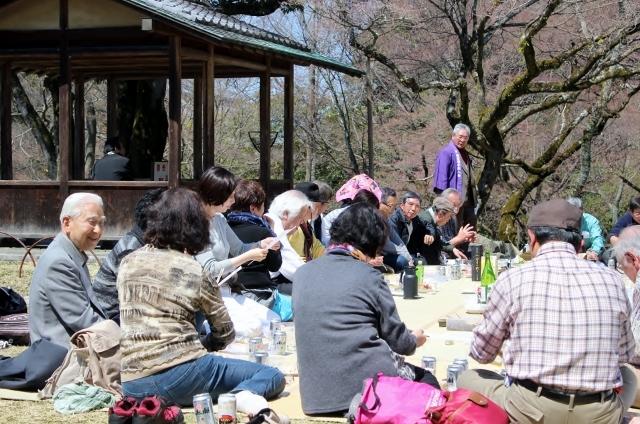 京都でお花見会を開催しました_a0165546_17505672.jpg