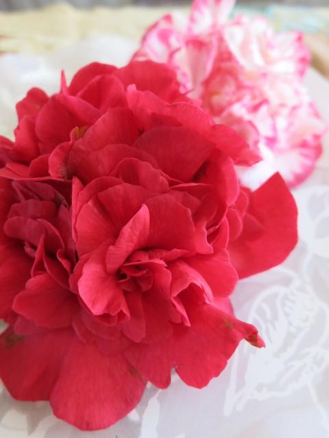 春のおやつ *さくら餅といちご大福_f0236260_00093987.jpg