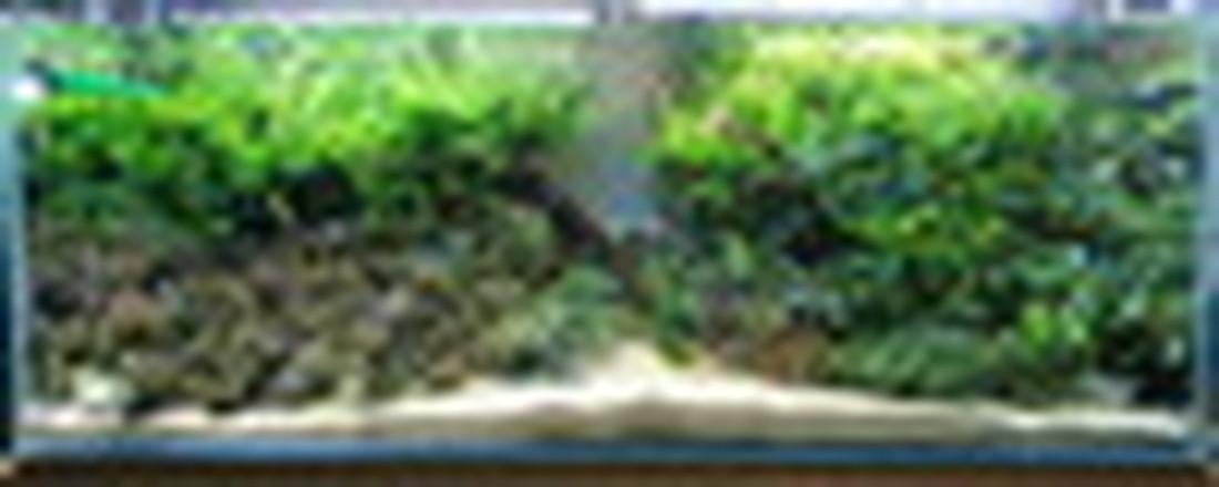 f0345888_01114428.jpg
