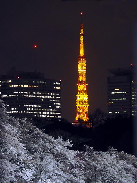 夜桜散歩_d0358793_09055637.jpg