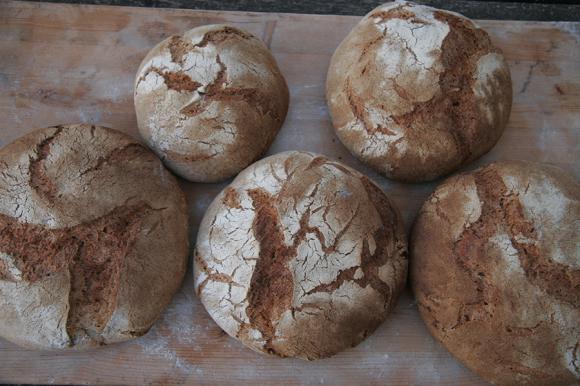 少しずつ進歩〜今日のパン焼き_f0106597_05522273.jpg