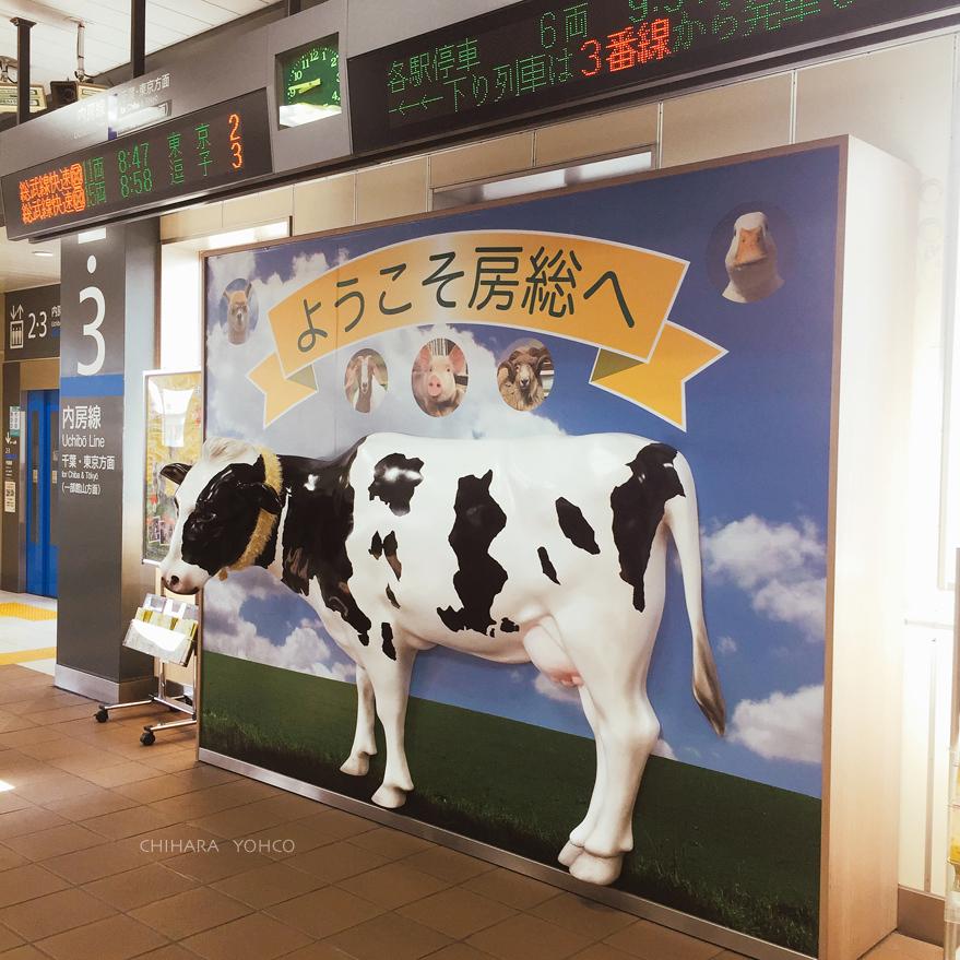 青春18切符東京湾ぐるり一周の旅_d0138811_21471069.jpg