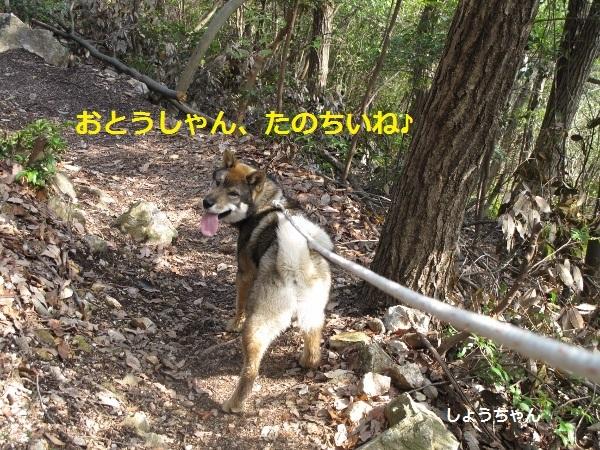 f0143123_10413336.jpg