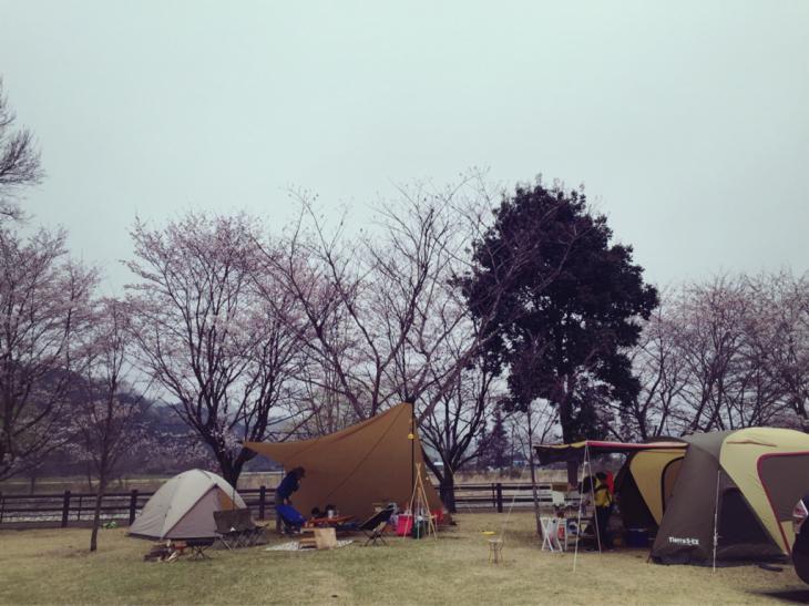 5月のライブpart2とキャンプと_a0127284_15555424.jpg