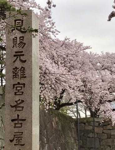 名古屋へ出張勉強会!_e0092612_17470883.jpg