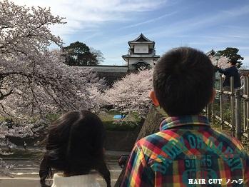 お花見 ~兼六園~_e0145332_20171492.jpg